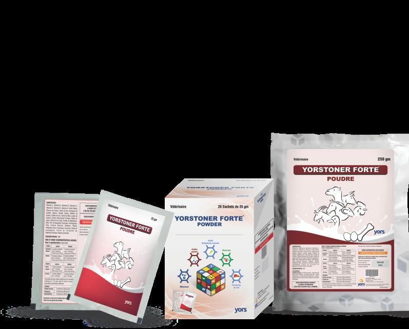 YORSTONER FORTE - Powder PackShot - Copy